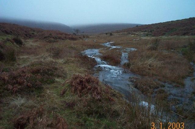 East Webburn - Dartmoor
