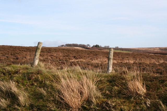 Exmoor: by Larkbarrow Gate