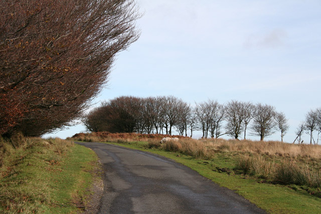 Exford: road by Alderman's Barrow