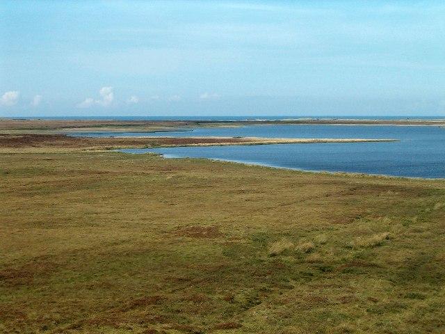 Bogland south of Loch Gorm, Isle of Islay