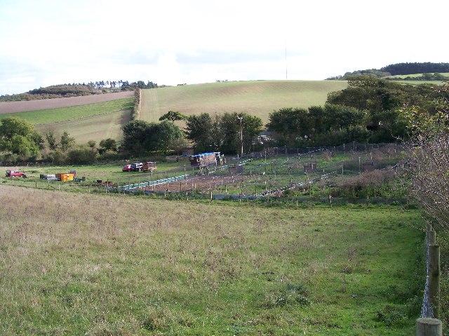 Pheasant Rearing Pens, Rowborough Farm