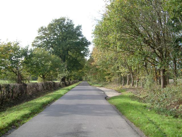 Morgaston Road