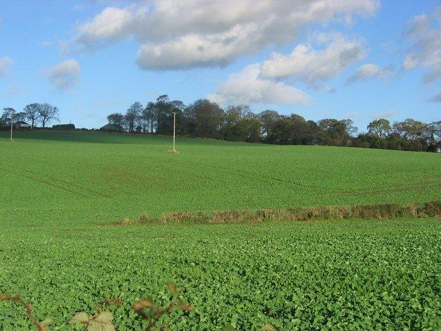 Farmland above Crossford