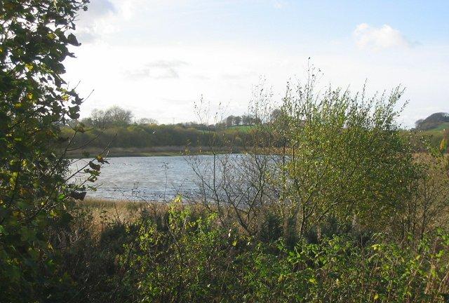Craigluscar Nature Reserve.