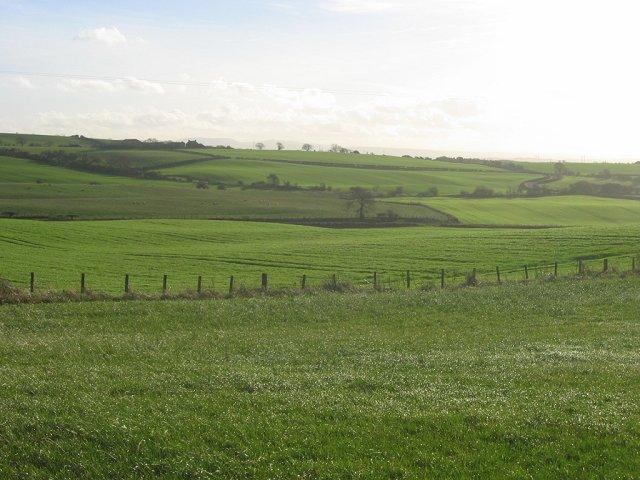 Fields, Donibristle.