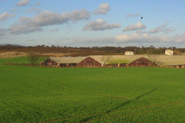 Mossbank Farm.