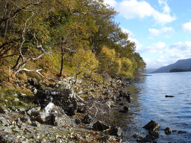 Wooded shoreline of Loch Maree