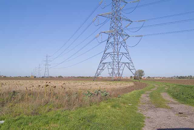 Power line off Hither Old Gate, Holbeach, looking NNW