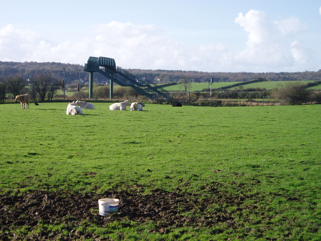 Railway footbridge near Holme