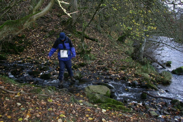 Footpath by the Rookhope Burn