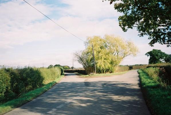 Willow, Hurst