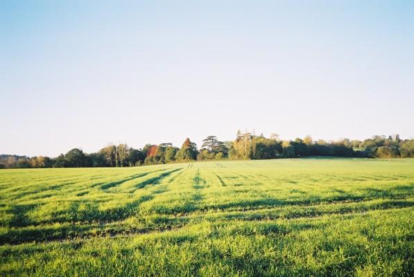 Farmland, Binfield