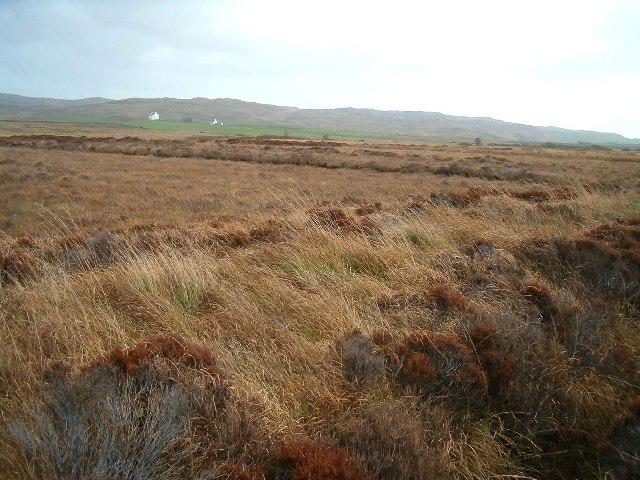 Peat Bog near Kintra River, Isle of Islay