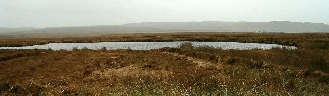 Peat bog  and lochan near Kintra River, Isle of Islay