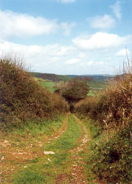 Lane south of Velwell, East Buckfastleigh