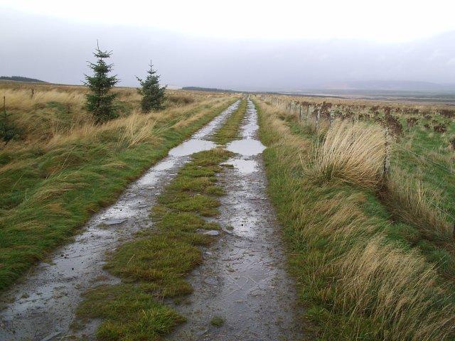 Croft Land Road near Blarbuie