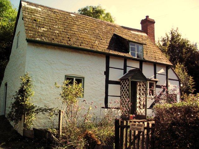 Yew Tree Cottage. White Leaved Oak