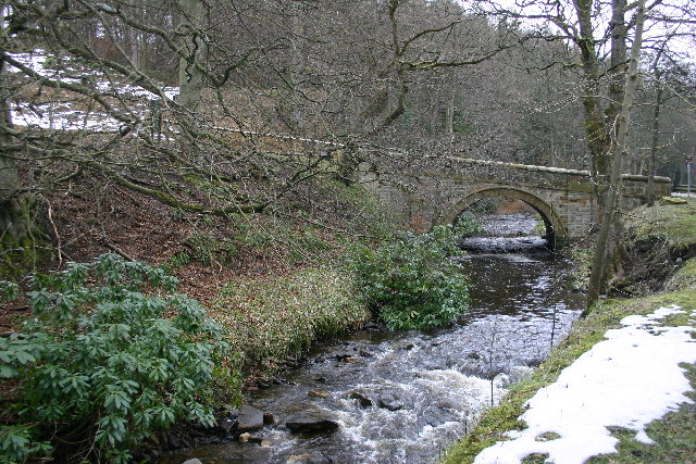 Bridge over the Spurlswood Beck, Hamsterley Forest