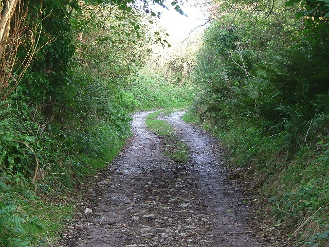 Bridlepath between East Prawle and Ham Stone