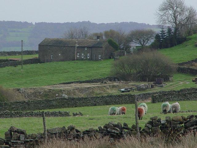 Noon Stone Farm