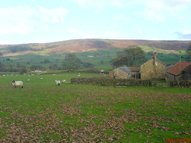 Colt House Farm