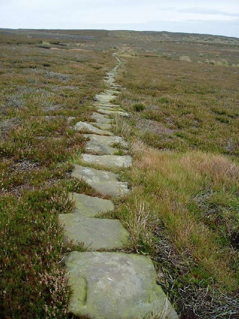 Stone slabbed causeway over the moors