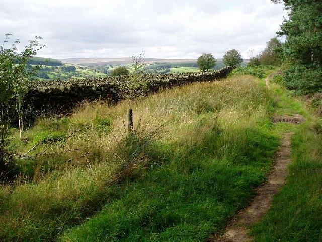 Hartoft Moor