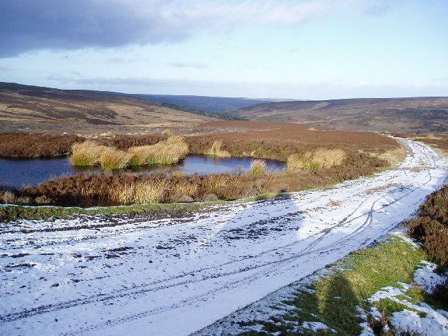 Pond, Farndale Moor