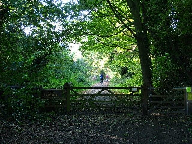 Cycleway, Pinchinthorpe