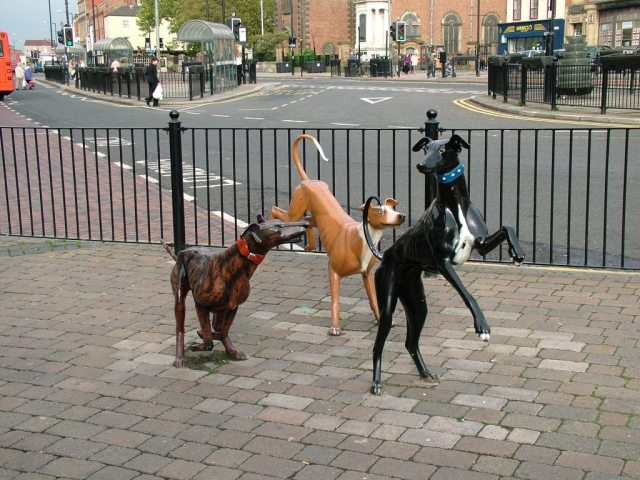 Dog Statues, Stockton High Street