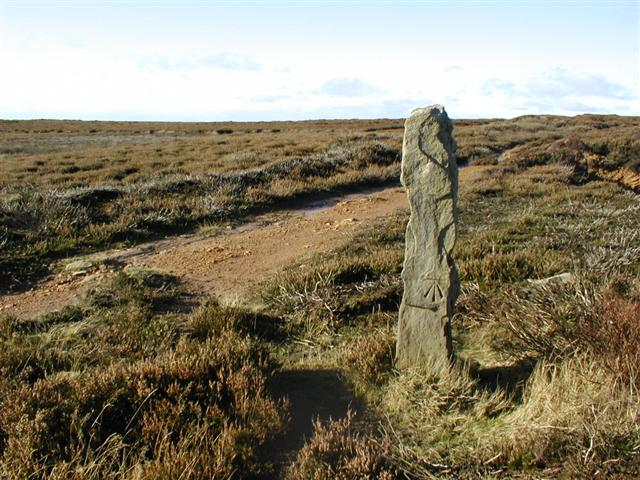 Stone with OS Benchmark, Rye Head