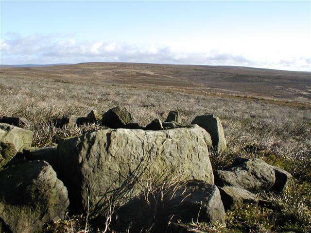 Ruins, Whorlton Moor
