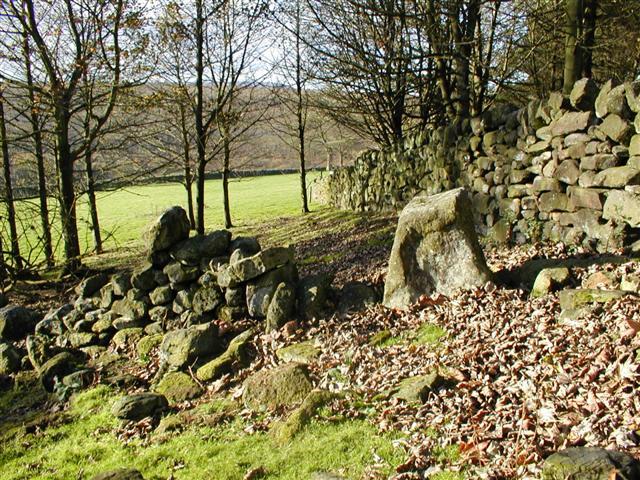 Orthostat Below Skelbeast Crag