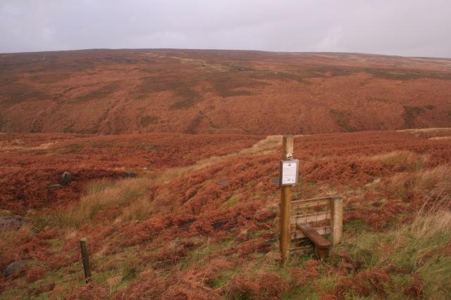 Open access land, Turvin Clough