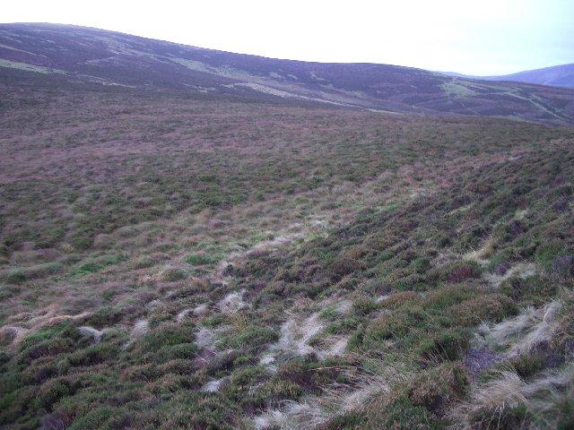 Rough ground below The Mount
