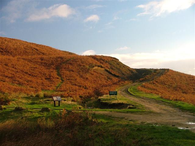 Public Bridleway to Percy Rigg, Great Ayton Moor