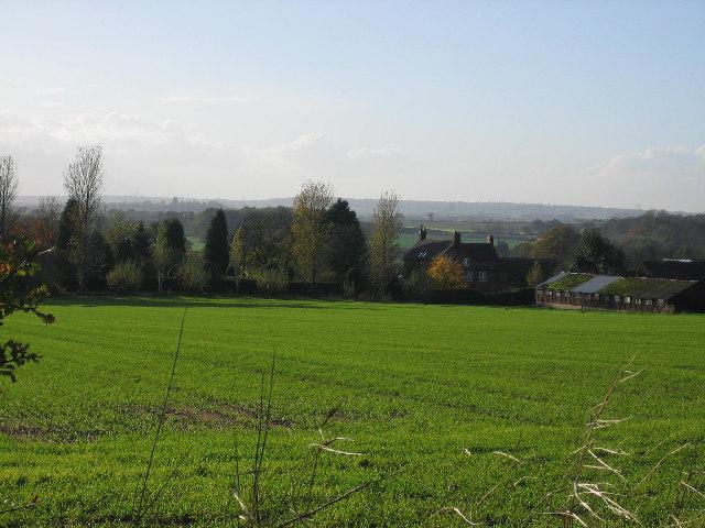 Packington Moor