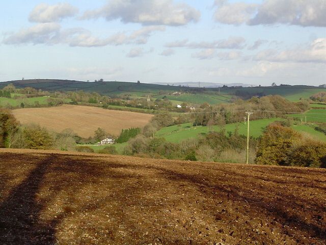 South Hams countryside - Devon