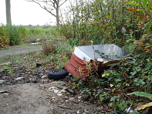 Fly-tipping in King's Wood