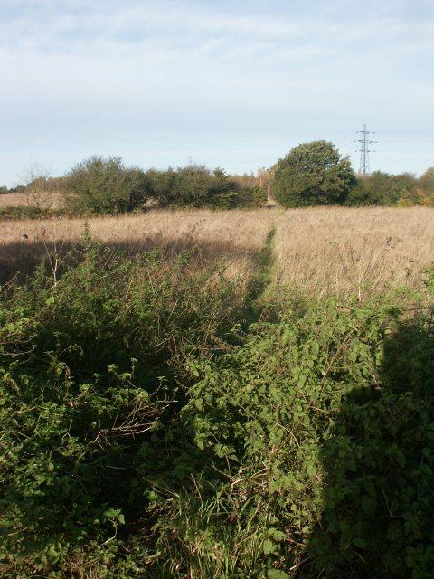 Path, Bowthorpe