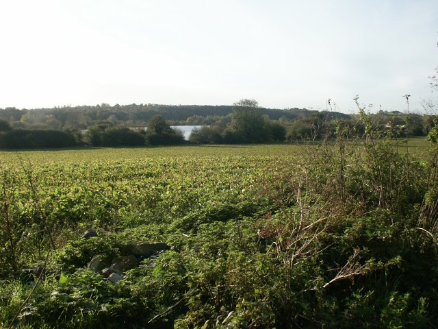 Fields and lakes, Bowthorpe