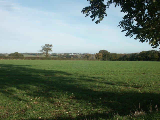 Field above Bawburgh