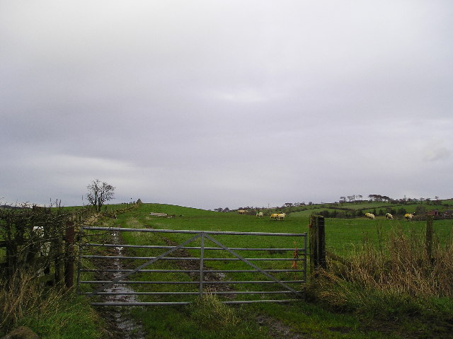 Tennoch Hill