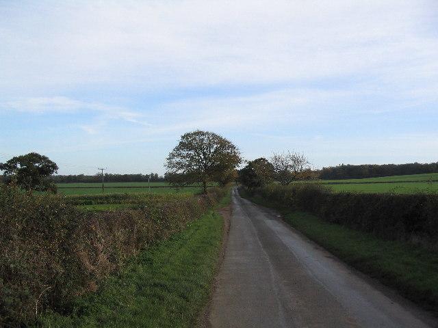 Sawgate Road IV