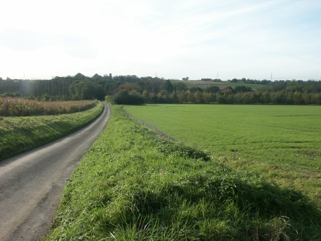 Yare Valley, Colton / Barford