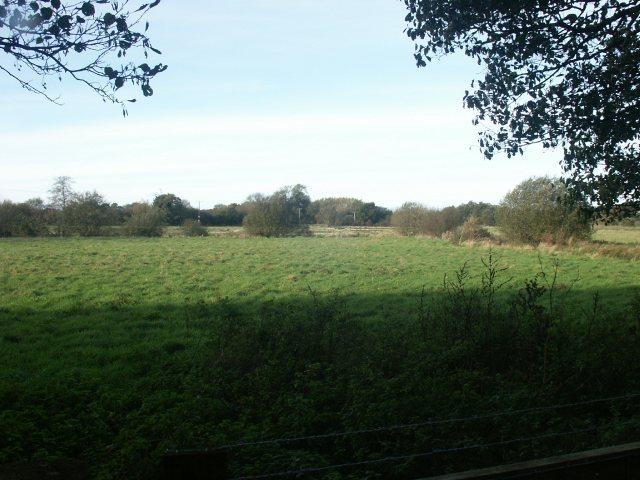 Marshes, Barford