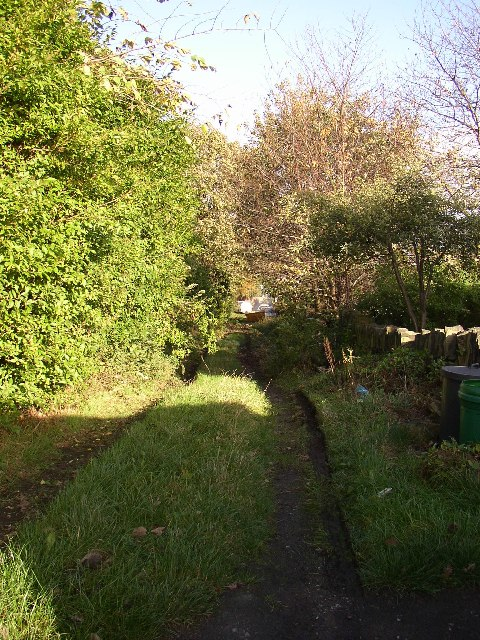 Back lane behind Tofts Grove