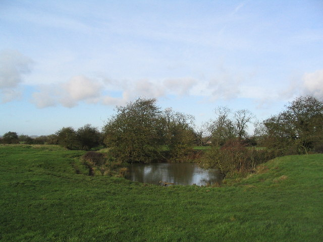 Pond at site of St Lazarus Hospital