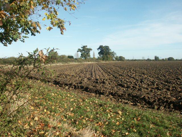 Ploughed field, near Wramplingham