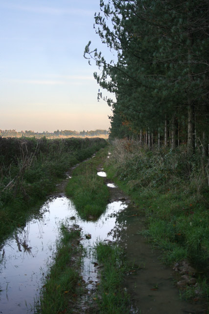 Farm track near Sproxton